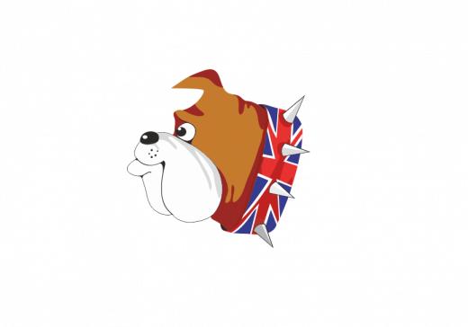 английский бульдог олимпиада 2018 2019